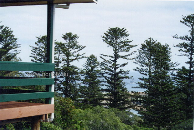Endeavour Lodge Norfolk Island The World Of Norfolk