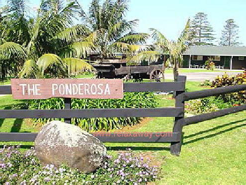 Ponderosa Apartments Studios Norfolk Island The World Of Norfolk Norfolk Island