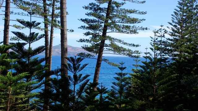 Ponderosa Apartments Amp Studios Norfolk Island The World
